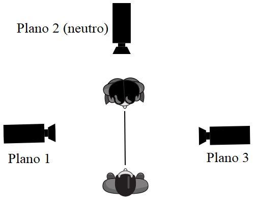 salto de eje correcto 1